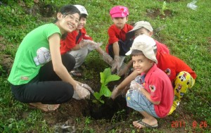 Our Environmental Benefits of trees